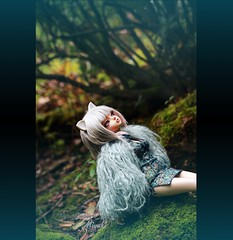 The birds (pure_embers) Tags: pure embers resin bjd 14 doll dolls ns uk girl minifee miyu miyuki msd pureembers pureembersmiyuki photography crieddoll photo ball joint portrait frappzilla wig grey kitty ears birds nature dolly cat