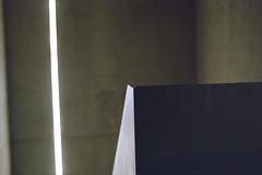 Neon light (Germán Talavera) Tags: nikonfm2 luxembourg moody 35mm film analogue kodak gold