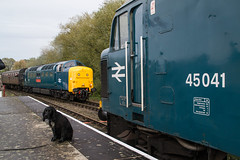 55019 - Orton Mere - 13.10.2019 (Tom Watson 70013) Tags: nvr nene valley railway diesel gala trains class55 55019 royal highland fusilier class45 45041 tank regement orton mere station