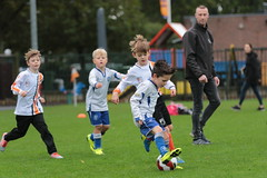 "HBC Voetbal • <a style=""font-size:0.8em;"" href=""http://www.flickr.com/photos/151401055@N04/48893180781/"" target=""_blank"">View on Flickr</a>"