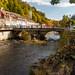 Grüne Brücke in St. Blasien