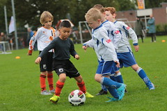 "HBC Voetbal • <a style=""font-size:0.8em;"" href=""http://www.flickr.com/photos/151401055@N04/48893356817/"" target=""_blank"">View on Flickr</a>"
