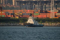 2019 09 21 Yantian_DVL9271 (larry_antwerp) Tags: yantian port 港口 海港 פארט 港湾 항구 بندر ميناء china yangangtuo2 tug sleepboot 拖船 буксир タグボート زورق قطر