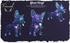 Foxwood - Ghost Corgi @ Kustom9! (Dani @ Foxwood/Alchemy/Birdy/Foxes) Tags: screenshot sl secondlife foxwood corgi pet companion mesh ghost cute kustom9