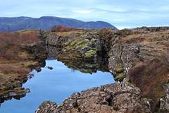 National Park Thingvellir (Gúnna) Tags: ísland iceland nationalpark thingvellir þingvellir haust autumn fall