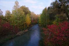 (Marion Schreiber) Tags: autumn vienna austria wien october oktober donauinsel donau colorful wideangle stream fluss
