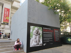 2019 Lions NY Public Library Still Renovating 5535 (Brechtbug) Tags: 2019 lions new york public library still done with renovations but they added pictures statues lion braving morning sunshine 42nd street 5th avenue nyc 10132019 october fall autumn weather eventually animal cat feline statue sculpture art cats ave st gargoyles gargoyle reclining repose resting facade stairs front entrance