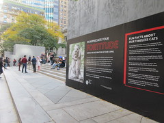 2019 Lions NY Public Library Still Renovating 5531 (Brechtbug) Tags: 2019 lions new york public library still done with renovations but they added pictures statues lion braving morning sunshine 42nd street 5th avenue nyc 10132019 october fall autumn weather eventually animal cat feline statue sculpture art cats ave st gargoyles gargoyle reclining repose resting facade stairs front entrance