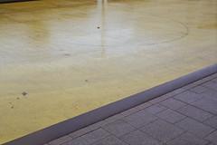 Wet floor (Germán Talavera) Tags: nikonfm2 luxembourg moody 35mm film analogue kodak gold