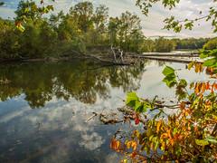 Ramapo River Oakland_2566 (smack53) Tags: smack53 autumn autumnseason autumncolors fall fallseason fallcolors foliage ramaporiver oakland newjersey nikon coolpix p7000 nikonp7000 nikoncoolpixp7000 river water pond trees mountains