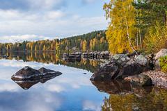 Autumn colours (Henrik Axelsson) Tags: autumn bergslagen ludvika väsman foliage forest lake landsbygd sjö skog trees vatten water