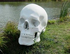 Large skull by a pond - Schädel (Skull) by Katharina Fritsch, 2017 (Monceau) Tags: large scull sculpture schädel skull katharinafritsch sydneyandwaldabesthoffsculpturegarden neworleans