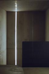 Neon light (German Talavera) Tags: nikonfm2 luxembourg moody 35mm film analogue kodak gold