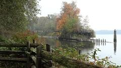 Bridge Over There (Timo Juhani) Tags: bridge trees fall creek fence river dolphin mist foggy