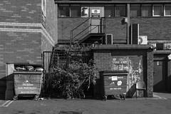 Street (lightersideofdark) Tags: blackwhite street streetphotography dark outside outdoors cloud sky brickwall brick wall architecture urban old windows tree telegraphpole garage boardedup derelict stairs