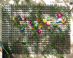 The Great Wall of Crochet (1 of 2) (Su_G) Tags: sug 2019 seenonthestreet northsydney suburbansydney sydneysuburbs suburban guerillacrochet thegreatwallofcrochet crochet handcrafts craft handmade colourful colorful red yellow orange pink green
