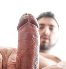 erection cock penis stiff dickhead smell cheese precum (kinkhumiliation) Tags: erection cock penis stiff dickhead smell cheese precum solo male dick cockhead stiffy uncut fluid juice