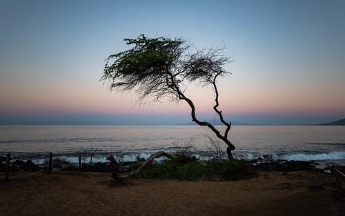 Maui's sunrise gradient