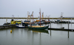 Rain in Den Oever (Julysha) Tags: denoever harbour boats thenetherlands noordholland rain autumn october acr rainy northsea d850 sigma241054art