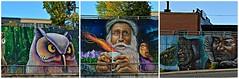 Murals, Lawrence Avenue West and Caledonia Road, Toronto, ON (Snuffy) Tags: murals lawrenceavenuewestandcaledoniaroad toronto ontario canada essenciaartcollective streetartoronto startoronto
