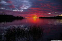 HarrisLake+1_0946_fusw (nickp_63) Tags: harris lake sunset sundown new hill north carolina nc sky clouds wake county shearon reservoir park peninsula