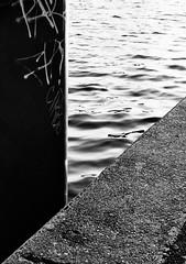 three [berlin 36/37] (Andrew.King) Tags: water ripples blackandwhite black white monochrome concrete rough texture contrast line lines leading absteact minimalist minimalism nikon ektar100 ektar colour film graffiti berlin city river summer