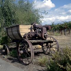 Mechanized Agriculture (Scott Holcomb) Tags: quiviravineyards drycreekdistrict sonoma california kowasix kowa13555mmlens kowal1aø67filter kodakportra400film 6x6 120film mediumformat epsonperfectionv600 photoshopdigitalization