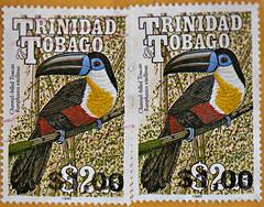 Trinidad and Tobago Toucan