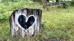 Heart at Långholmen  in Stockholm, Sweden 11/8 2019. (photoola) Tags: stockholm långholmen hjärta nature graffiti heart sweden photoola