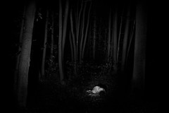 startled (the ripped bystander) Tags: blackwhite white lady night darkness forest female trees fetus