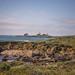 Piedras Blancas Light Station Overlooking Elephant Seal Rookery