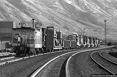 Marysvale Local Freight (jamesbelmont) Tags: riogrande drgw salinalocal emd sd45 gp9 provo utah caboose train railroad railway locomotive grayscale monochrome film