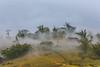 _Y2U0979.0213.Hầu Thào.Sapa.Lào Cai (hoanglongphoto) Tags: landscape nature morning mist village bamboo vietnam làocai sapa hầuthào phongcảnh thiênnhiên buổisáng sươngmù bảnlàng nhà câytre màu ảnhmàu canon canoneos1dx canonzoomlensef70200mmf28lisiiusm asia asian morningdew sươngsớm sươngmùbuổisáng hill hillside ngọnđồi sườnđồi plant treehill thựcvật đồicây house ngôinhà nhữngngôinhà bảnlàngtrongsương mountainvillage manyhouses happyplanet asiafavorites