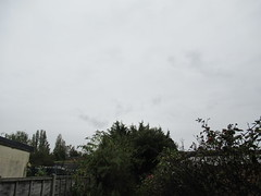 Monday, 14th, It's raining again IMG_0874 (tomylees) Tags: essex morning autumn october 2019 14th monday weather sky raining