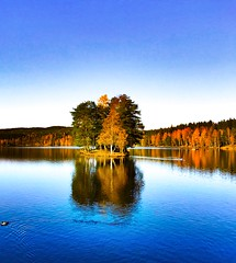 Small island. Sognsvann. Oslo