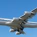 Lufthansa Boeing 747-8 747 -830 D-ABYT  LAX  DSC_0036