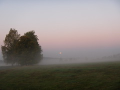 Moonset (CZDiver) Tags: moon moonset scenery weather morning dawn morningdawn nature