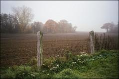 Nikon L35AF - Fuji Superia 400 exp (magnus.joensson) Tags: danmark dk kiel autumn november nikon l35af 35mm nikkor fuji superia 400 c41 exp 24x36