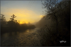 The Awakening. (Picture post.) Tags: landscape nature green autumn mist water trees sunrise reflections paysage arbre eau brume river