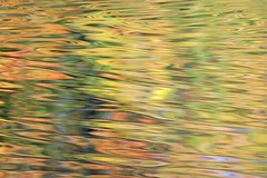 Colour pool (Leve Lumen) Tags: reflections colour autumn fall water ripples outside