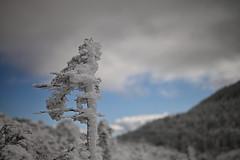 Landscapes: NIKKOR Z 58mm f/0.95 S Noct (Nikon Europe) Tags: noct landscape snow ice winter nikkor z 58mm f095 nikon