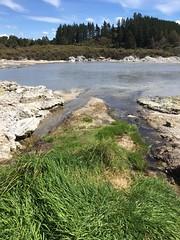 Hell's Gate, Rotorua