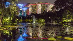 Lily Pond Reflections [Explored 14 Oct 2019] (yoosangchoo) Tags: singapore lily pond marina bay sands fireworks reflections night garden fountain landscape cityscape trees light
