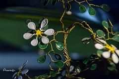 Wire_MM (Anavicor) Tags: mm hmm macromondays wire flower flor alambre craft anavillar villarcorreroana manualidades artesanía nikon tamron macro stilllife bodegón