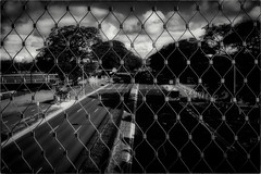 Illegal Suicide Zone (Peter Polder) Tags: australia alley abstract cityscape clouds emotion exterior sky lane monochrome mono overcast park road sydney street skyline trees urban