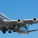 Lufthansa Boeing 747-8 DSC_0034