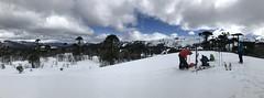 En la Meseta Las Vizcachas (Mono Andes) Tags: andes chile chilecentral regióndelbiobío randonné ski skitour esquí araucaria panorama invierno