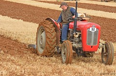 UK NATIONAL PLOUGHING CHAMPIONSHIP 2019 (Apple Bowl) Tags: massey ferguson uk national ploughing championship 2019 nocton beeswax lincolnshire