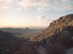 South Mountain Park and Preserve (Boris Capman) Tags: 645 southmountainpark phoenix arizona usa desert cactus mountains sunrise mediumformat filmisnotdead filmphotography 120film bronica etrs portra160 travel nature outside outdoor roadtrip backpacking argentique analog wanderlust