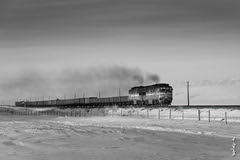 Deisel locomotive 2TE116 ... (N.Batkhurel) Tags: season winter sky clouds bw blackwhite railway railfan railroad trains trainspotting 2te116 locomotive diesellocomotive freighttrain ngc nikon nikondf nikkor 24120mm mongolia monrailpic